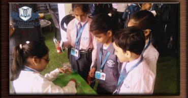 Schooling in uttam nagar6